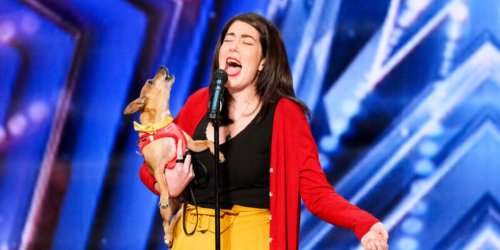 How America's Got Talent's Singing Dog Convinced Me The Auditions Stage Is The Best Part Of The Show