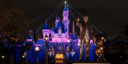 Disneyland Ride Got A Major Revamp While The Park Was Closed But Some Critics Aren't Happy