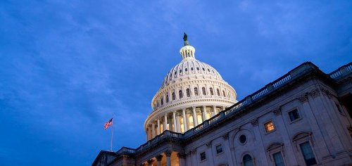 What draws private sector tech execs to government?