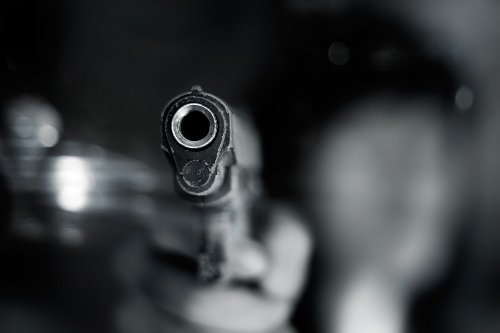 Proposed amendment to Firearms Control Act 'madness', says Cope