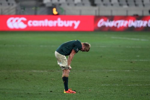 First Lions Test: Springbok player ratings
