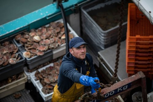 France to ban UK seafood in retaliation for withholding fishing licences
