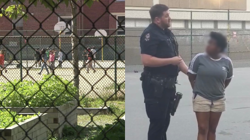 Vancouver police detain Black woman playing basketball, witnesses oppose arrest