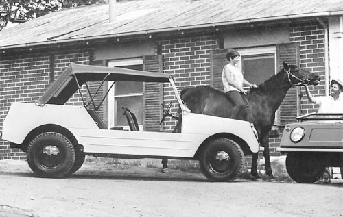 Down-under Volkswagen variation, Country Buggy is rare all-terrain model
