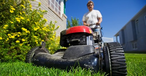 8 Backyard Cleaning Tips To Keep Your Lawn Looking Spectacular