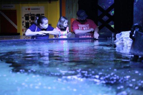 Pumpkins & Piranhas returning to Greater Cleveland Aquarium