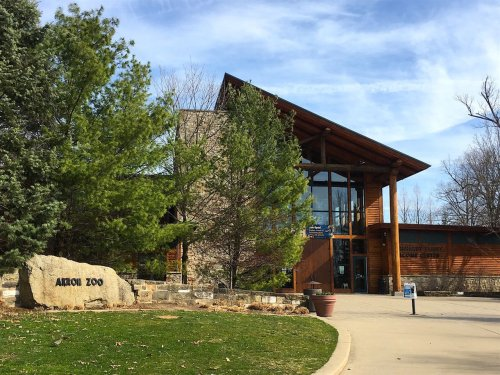 Akron Zoo to offer dads and grandpas free admission on Father's Day, June 20