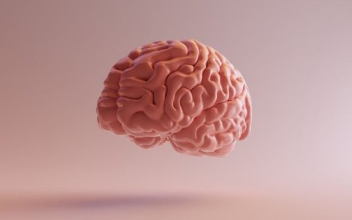 9 Neuroplasticity Exercises To Completely Reset Your Brain