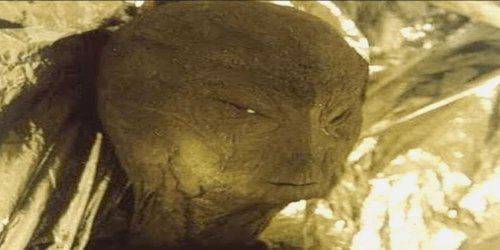 The Huge Underground Reptilian City found In Los Angeles (VIDEO)