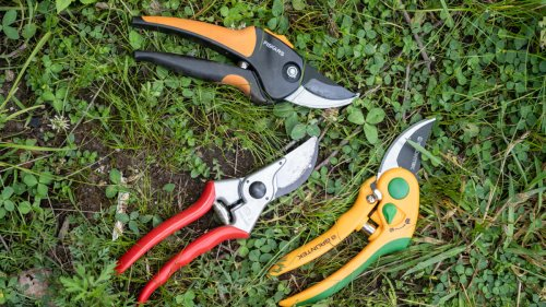 The Best Pruning Shears of 2021