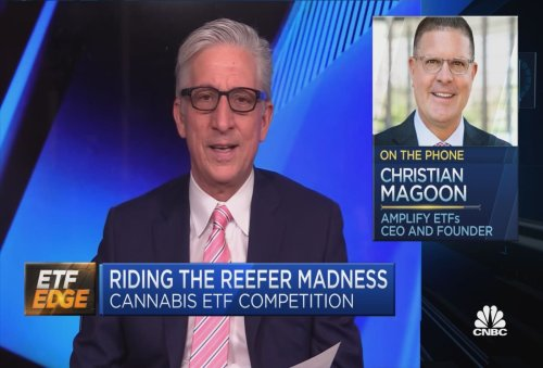 Top cannabis ETF manager on key industry trends to watch