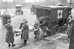 Discover the flu pandemic