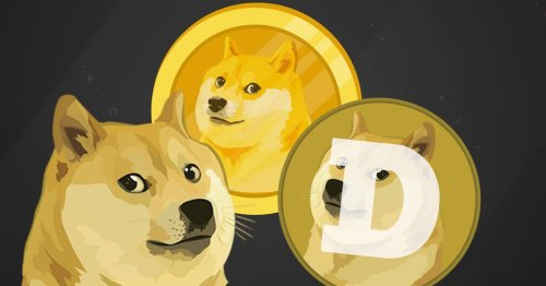 DogeCoin passed 40 cents: Why that excites the internet
