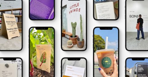 Apple Live Text takes on Google Lens, can read your photos