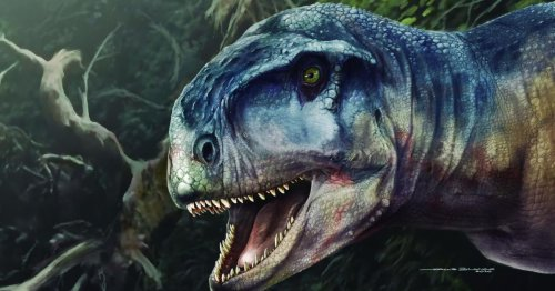 'One who causes fear': Newly discovered dinosaur was a true meat-eating terror