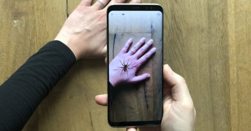 Augmented reality spiders can help battle arachnophobia, scientists say