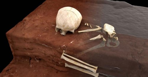 Scientists find Africa's oldest human burial, a child from 78,000 years ago