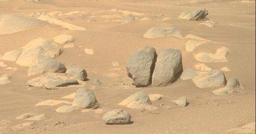 NASA Perseverance Mars rover spots delightfully goofy rocks (hello, butt rock)