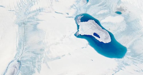 Enough ice melted on Greenland this week to cover Florida in a half foot of water