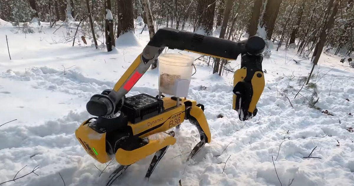 See Boston Dynamics' Spot robot dog play jump rope and pick up laundry