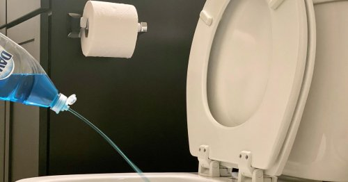How to unclog a toilet without a plunger using this ingenious science hack