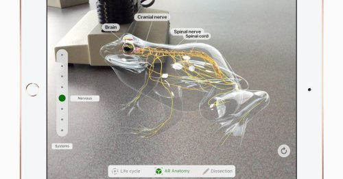 Buy an iPad, save a frog? Apple's AR app lets you dissect them