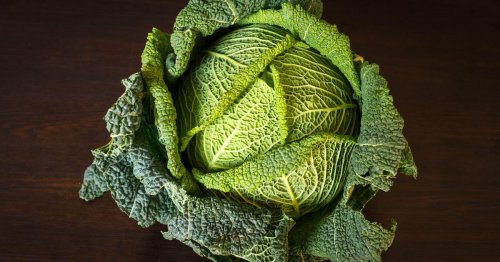 Scientists turn cabbage into construction material stronger than concrete