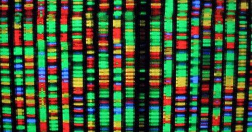 Best DNA test for 2021: AncestryDNA vs. 23andMe and more