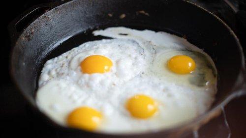 Ces 10 aliments qui contiennent le plus de protéines