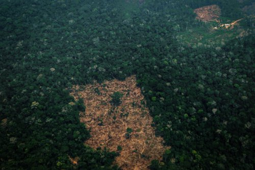 L'Amazonie émet désormais plus de carbone qu'elle n'en absorbe, selon une étude