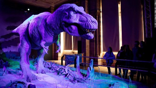 Dinosaurs were doing well -- until the asteroid hit