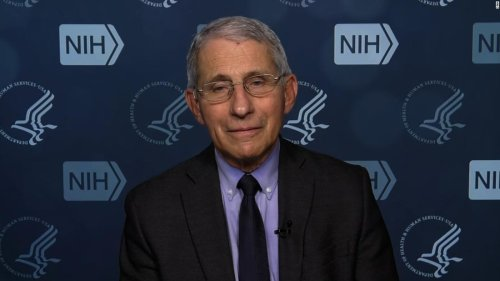 Fauci says lack of candor from Trump administration 'very likely' cost lives