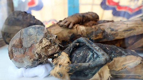 Egypt discovers a tomb full of mummified cats, mice and other animals | CNN