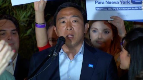 Andrew Yang concedes in NYC mayoral race