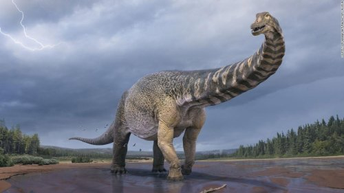 This ancient dinosaur would give today's blue whale a run for its money