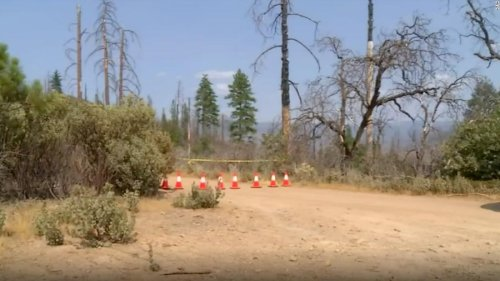 Trails and campgrounds near Yosemite where a family and their dog were found dead have been closed because of 'unknown hazards,' officials say