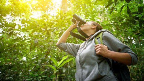 All the gear you didn't know you needed to go birding | CNN Underscored