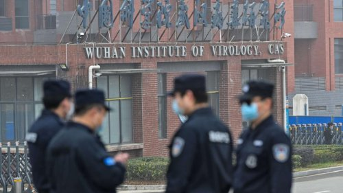 Exclusive: Intel agencies scour reams of genetic data from Wuhan lab in Covid origins hunt   CNN Politics