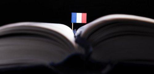 Dictionnaire des francophones : le français par tous