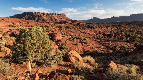 The New Utahraptor State Park Has Mountain Biking Trails and Dinosaur Bones