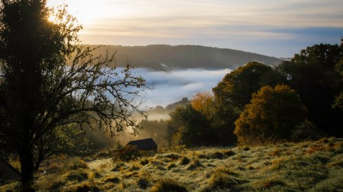 How to Plan a Fall-Foliage Getaway to England's Forest of Dean