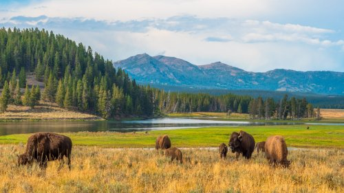 National Parks Are Changing Reservation Rules This Fall
