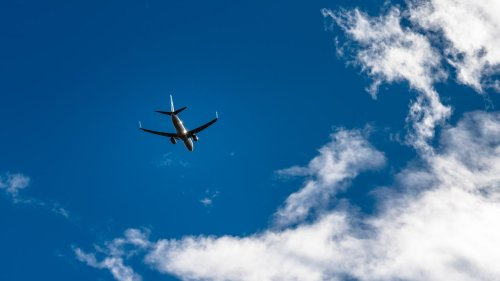 A New Bill Wants to Require COVID-19 Vaccines or Negative Tests for Domestic Flights