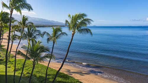 Hawaii Travel Restrictions: What to Know Before You Go