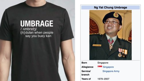 After SPH CEO's meltdown, Singapore can't stop, won't stop using the word 'umbrage' | Coconuts Singapore