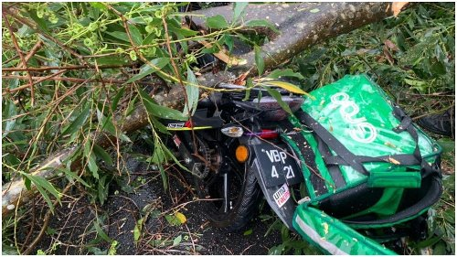 Falling tree branch kills delivery man during thunderstorm in Cheras