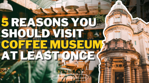 5 Reasons You Should Visit Coffee Museum At Least Once