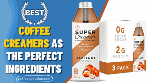 Best Coffee Creamers As The Perfect Ingredients in 2021 - Coffeespiration