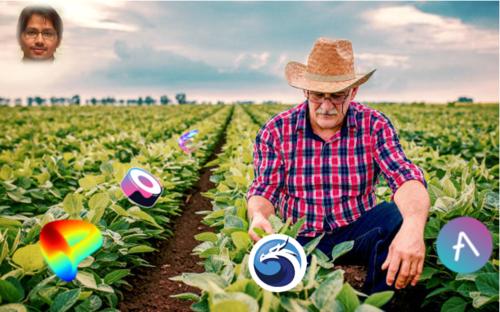 Yield Farming on Polygon
