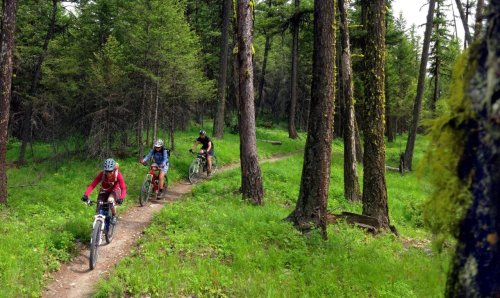 The Ultimate Guide to Biking Whitefish Montana and Glacier National Park